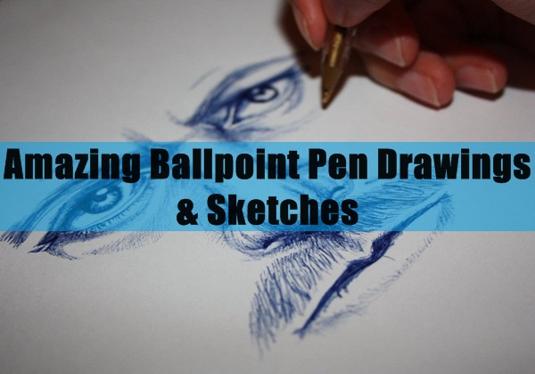 Amazing Ballpoint Pen Drawings & Sketches