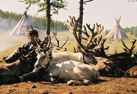 Trip to Magical & Thrilling Mongolia (4)