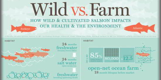 15 Inspired Infographics For Your Knowledge