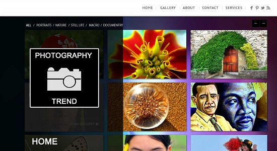 PSD Photography web templates