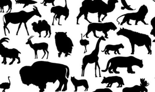 41 Animal Vector Silhouettes