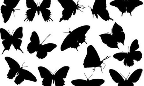 Free Butterfly Silhouette Vector Pack