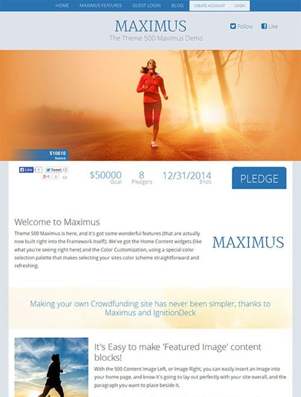 Crowd Funding WordPress Themes of the Year14