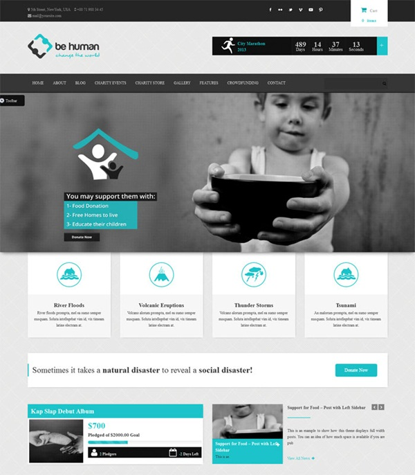 Crowd Funding WordPress Themes of the Year7
