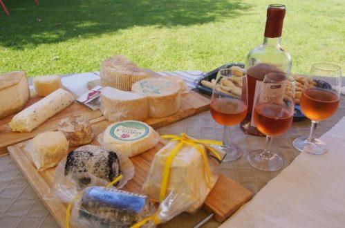 ピエモンテのチーズ&バローロのワイナリー