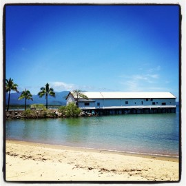 Around Port Douglas beaches