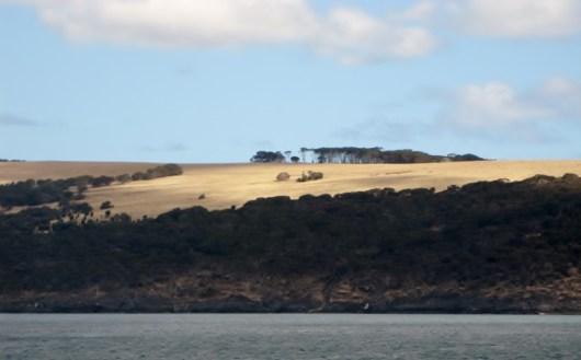 """Bye, bye"" Kangaroo island (Photo credit: http://www.lavaleandherworld.wordpress.com)"