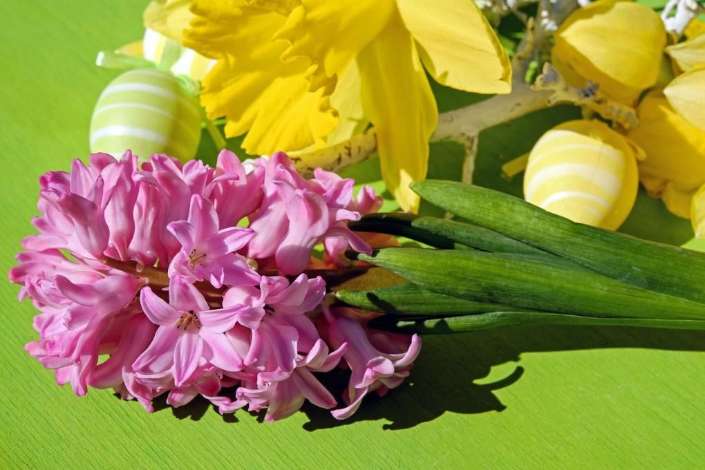 Buona Pasqua 2