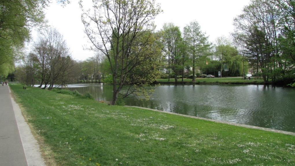 Mulhouse 4