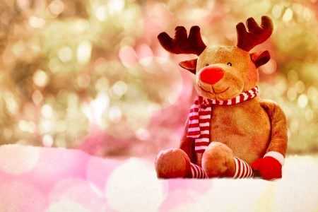 hello december 1