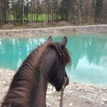 lac-cheval