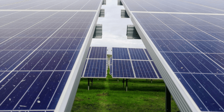 Sustainable Living – Ways to Go Green in Your Home