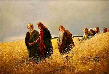 Suy Niệm Thứ Bảy Tuần XXII Thường Niên C – Giáo Xứ Đức Mẹ Lavang – Houston  Texas