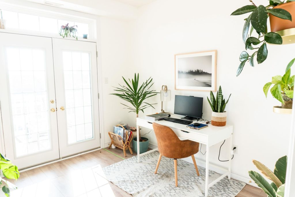 Office with lots of light and plants