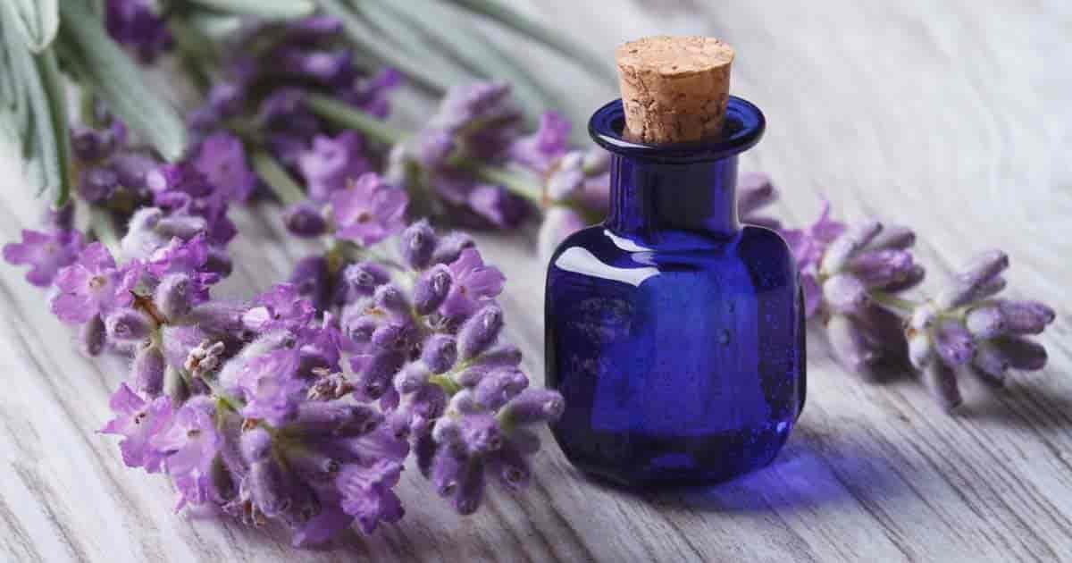 lavender-essential-oil-09302017-min