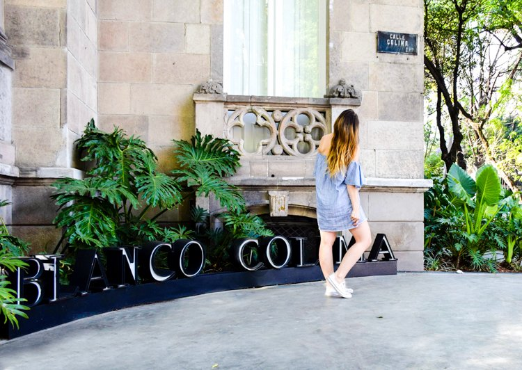 La Roma, Blanco Colima - 20 Photos Inspire You to Visit Mexico City, Mexico