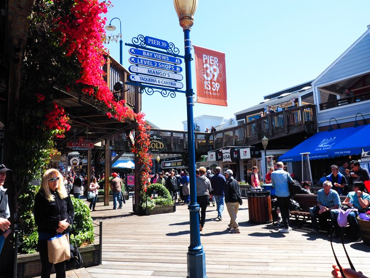 Fisherman's Wharf/Pier 39 - 48 Hours in San Francisco