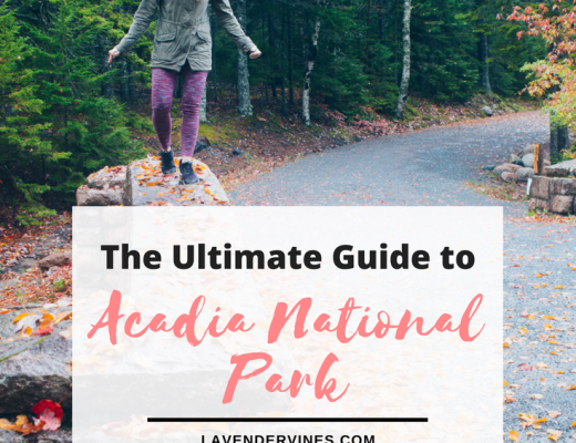 Carriage Roads - Guide Acadia National Park