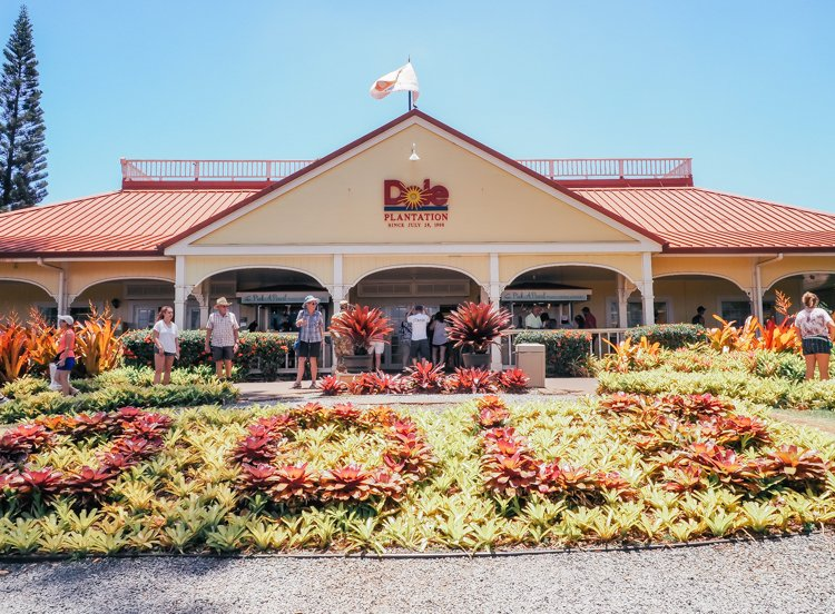 Things to do in Hawaii - The Dole Plantation Pineapple Express Tour