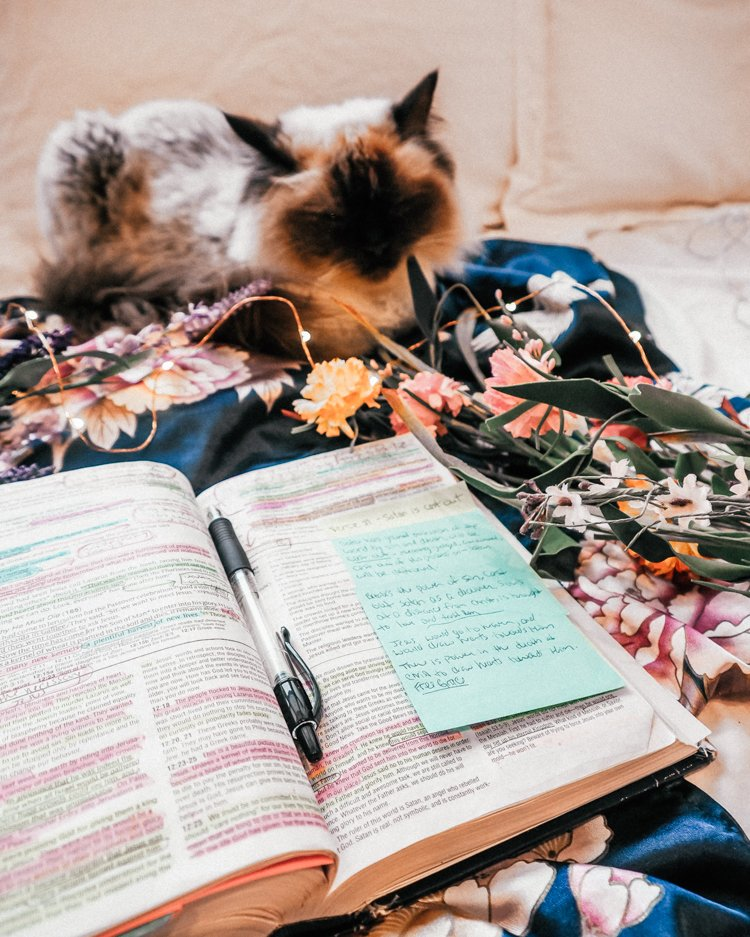Top 10 Bible Study Tips