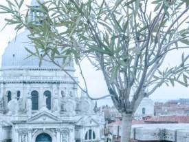 Sposarsi a Venezia Instameet, February 2016