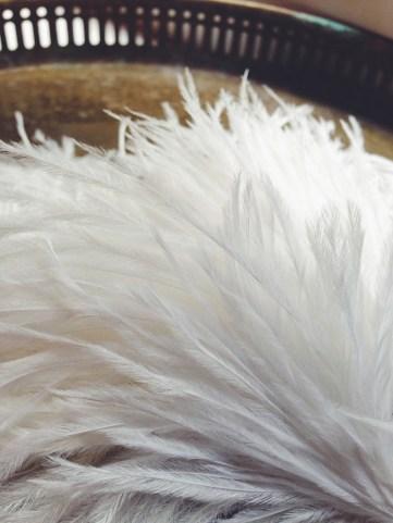 Bridal materials / L'avenir Seattle
