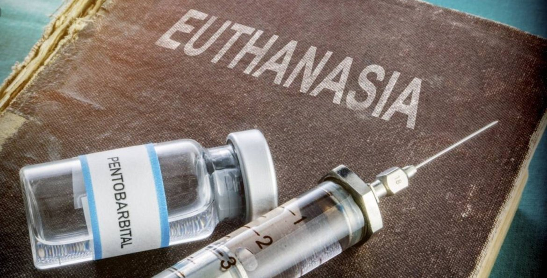 Parlamento aprueba la eutanasia en España