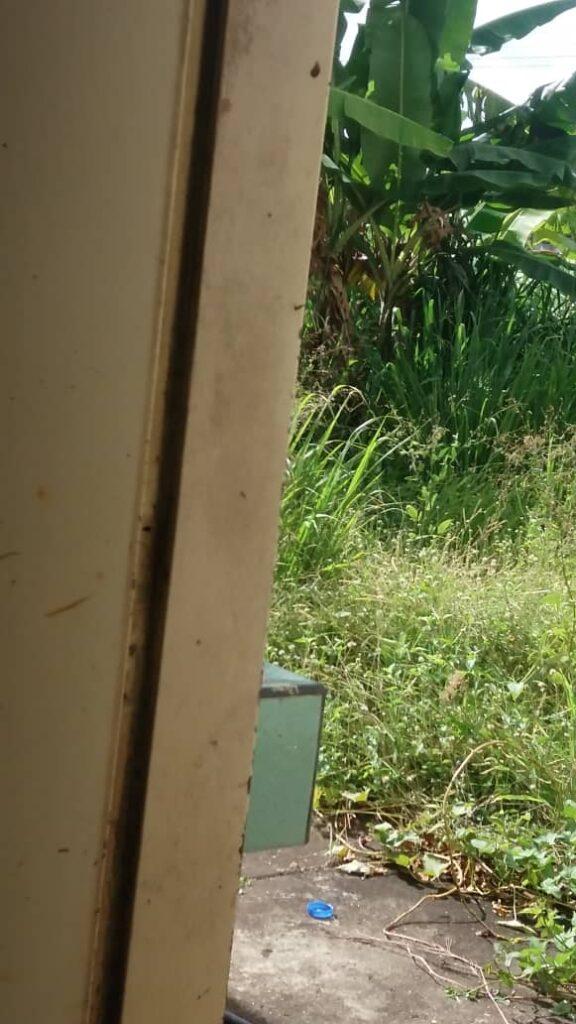 laverdaddemonagas.com desmantelan jardin de infancia ines ponte en 23 de enero