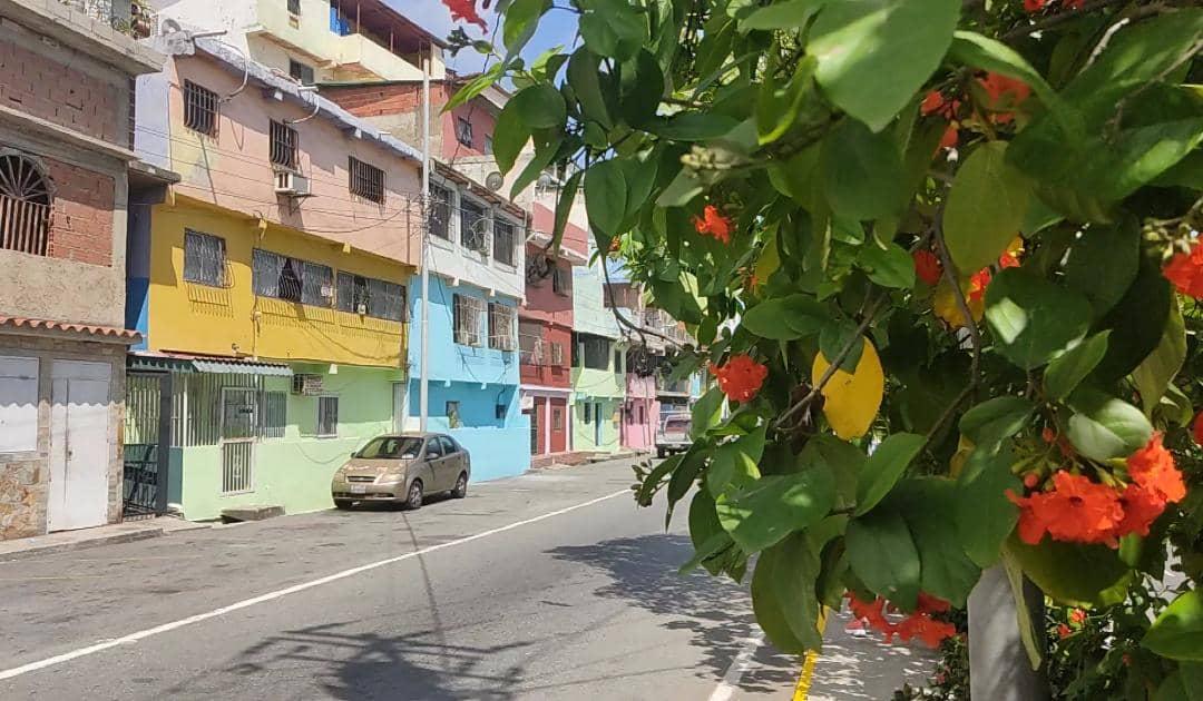 sabado tricolor se desarrollo en la guaira laverdaddemonagas.com jj4