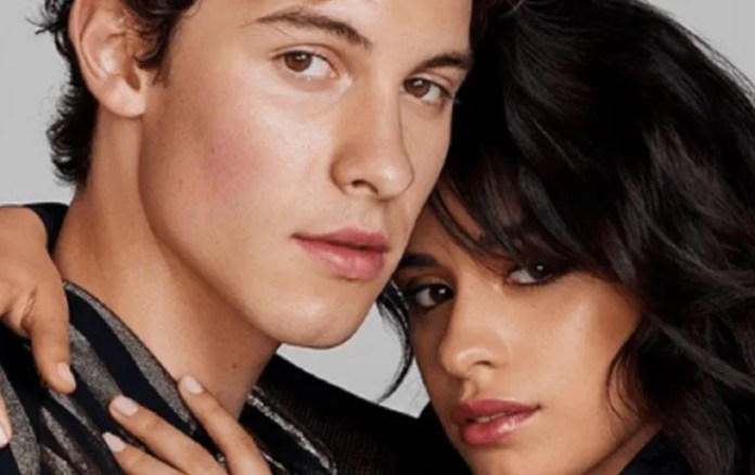 Camila Cabello and Shawn Mendes disobey the quarantine for romantic date