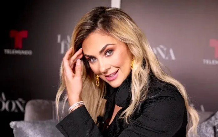 Aracely Arámbula: 5 facts that you probably did not know of this actress