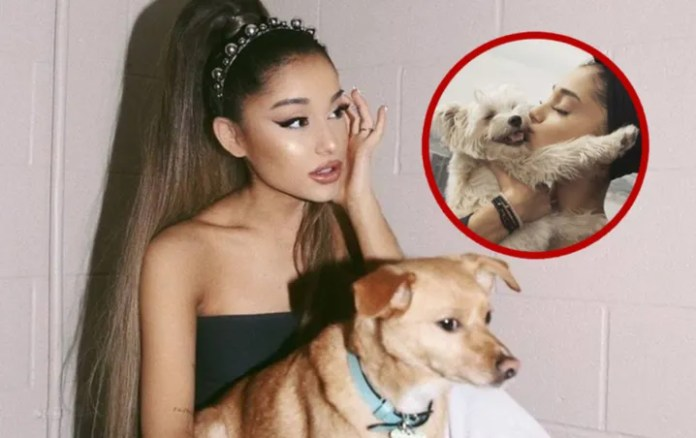 Ariana Grande has a ZOO in her house ¡Shocking!