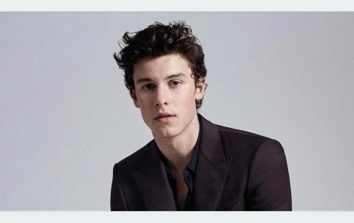 What's going on? Shawn Mendes the WIGGLES as a woman According to internet users!