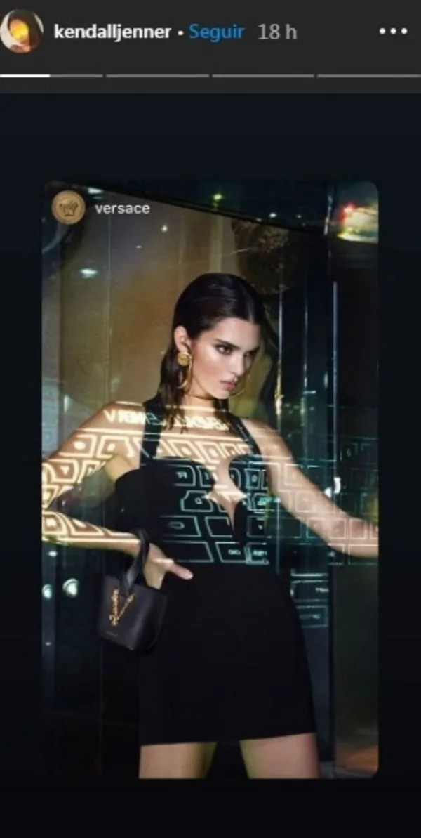 Kendall Jenner and the outfit stylish who modeled for the brand Versace
