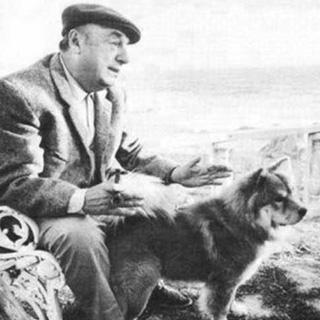Ode al cane, Pablo Neruda e Calbuco