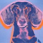 L'arte di Andy Warhol e i cani bassotto