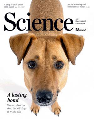 Science, aprile 2015 cover