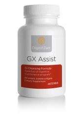 gx-assist