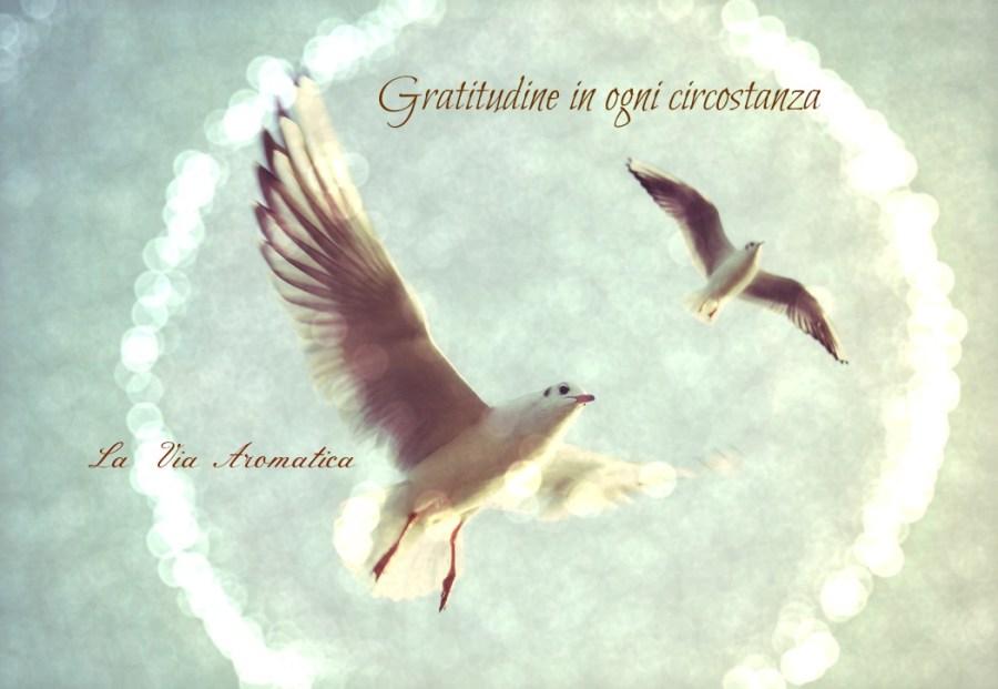 gratitudine-in-ogni-circostanza