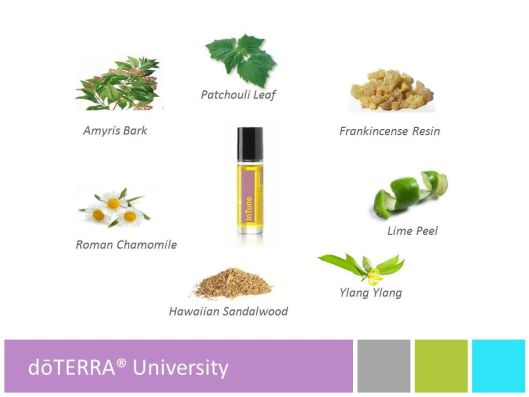InTune ingredients