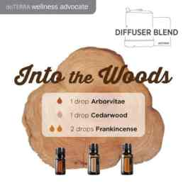 doTERRA-Essential-Oils-Into-the-Woods-Diffuser-Blend