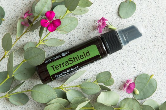 Luglio 2019 TerraShield-900x600
