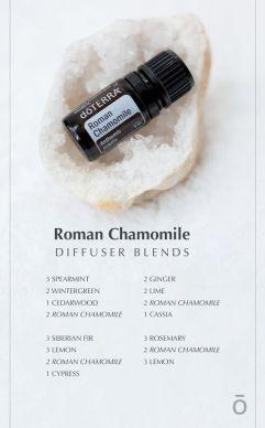 Roman Chamomile diffuser blends 4