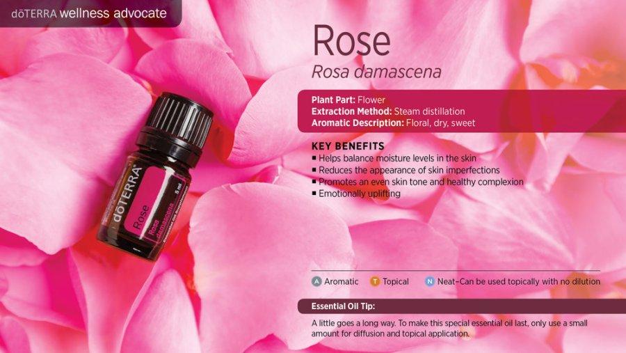 rose 5 ml