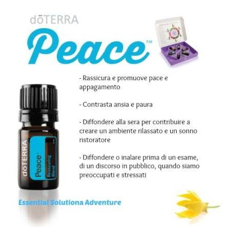 Blog-ready-peace italiano