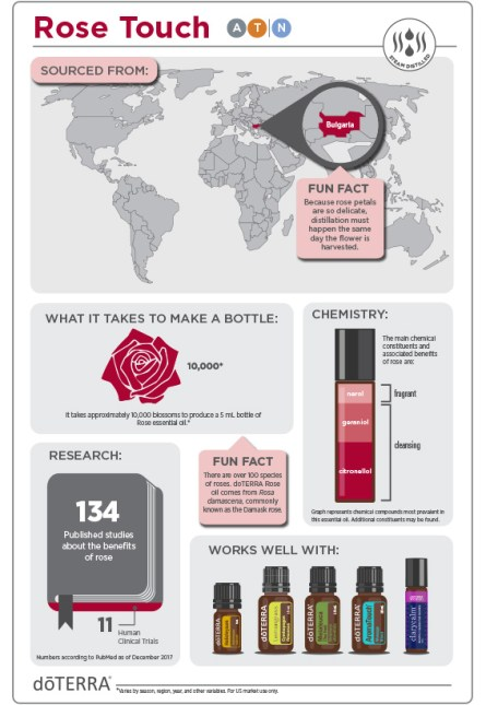 2x3-566x819-rose-touch-infographic-2