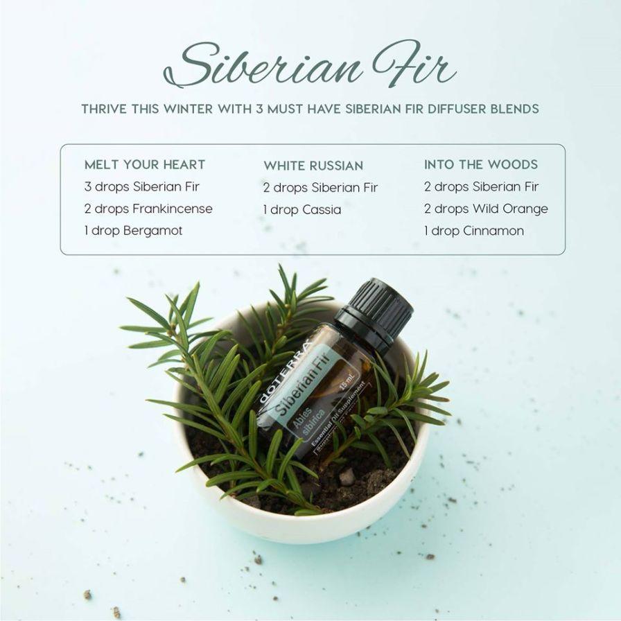 Siberian fir diffuser blends