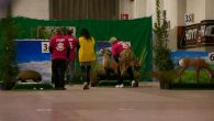 Fiarc-Indoor-italiano-2012_29