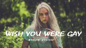 Billie Eilish – wish you were gay Lyrics Meaning