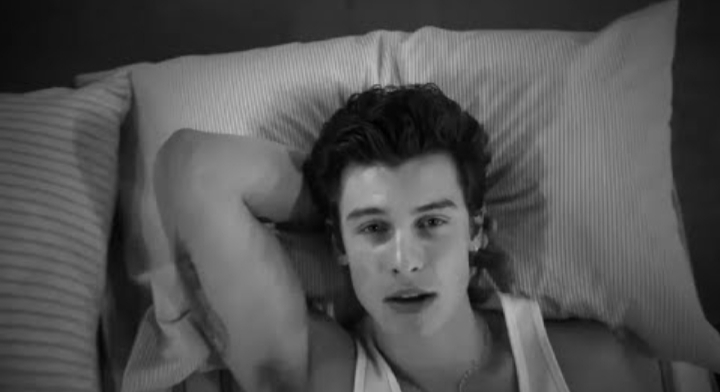 Shawn Mendes – If I Can't Have You Lyrics Review (Not Good)